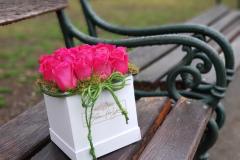 Blumen(Flower)box #2 -Verfügbarkeit anfragen (request availability)