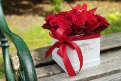 Blumen(Flower)box  #1  Verfügbarkeit anfragen (request availability)